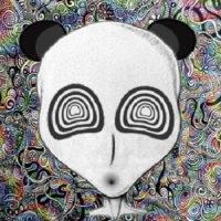 Alien Panda Jury